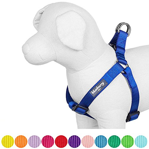 Blueberry Pet 12 Colors Step-in Classic Dog Harness, Chest Girth 20' - 26', Royal Blue, Medium, Adjustable Harnesses for Dogs