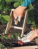 Gardener's Supply Company Wood Berry Picker