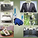 Simple Home Complete Pet Hair Remover with Travel Size and Pet Grooming Glove by, Self Cleaning Fur Remover, Reusable Lint Remover for Furniture, Hair Remover for Clothing (Blue)