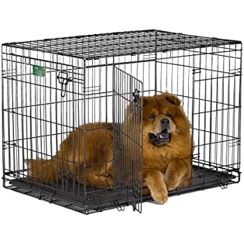 """MidWest 36"""" iCrate Double Door Folding Metal Dog Crate w/ Divider Panel, Floor Protecting """"Roller"""" Feet & Leak-Proof Plastic Tray; 36L x 23W x 25H Inches, Intermediate Dog Breed"""