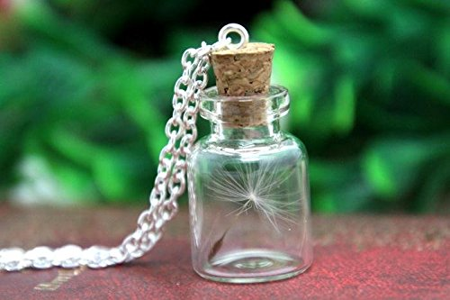 Real dandelion seed necklace, necklace, bottle glass