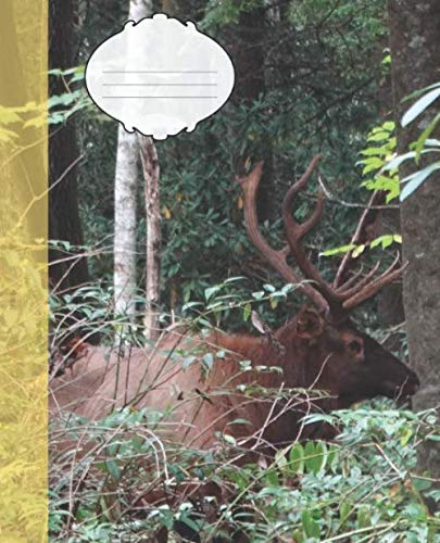 (Cute Bull Elk in the Smoky Mountain National Park Wildlife Photograph College-ruled Lined School Composition  Notebook (Colorado Wildlife Photo Covers: Natures School Supplies))