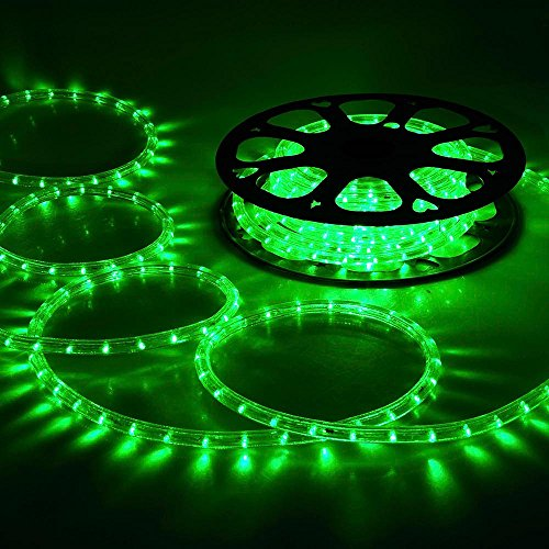 DELight 50ft Green 2 Wire LED Rope Light Indoor Outdoor Home Holiday Valentines Party Restaurant Cafe Decor