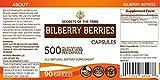 Bilberry Berries 90 Capsules, 500 mg, Organic