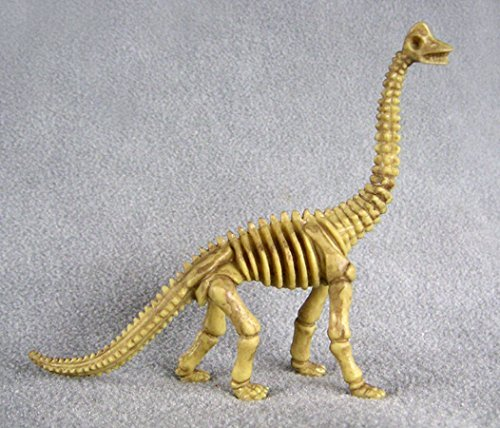 Brontosaurus Dinosaur Bones one-piece skeleton replica 4 3/4 inches tall 5 inches long - F3286 B61 by Collectible Wildlife Gifts (One Piece Replica)