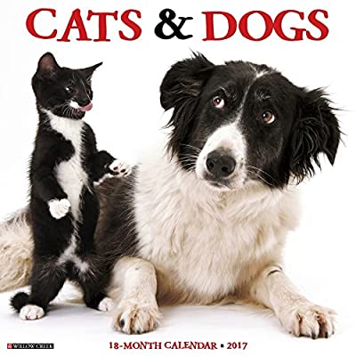 2017 Cats & Dogs Wall Calendar