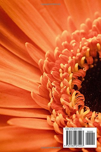 All Kinds Of Flowers: beautiful pictures of flowers
