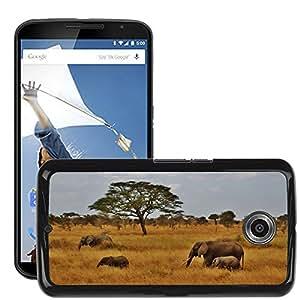 Super Stella Slim PC Hard Case Cover Skin Armor Shell Protection // M00148359 Elephants Baby Elephant Elephant Herd // LG Google Nexus 6