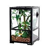 REPTI ZOO Full Glass Reptile Terrarium 10 Gallon 12