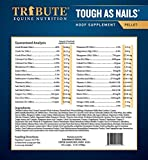 Tribute Tough As Nails 11lbs Pelleted Hoof
