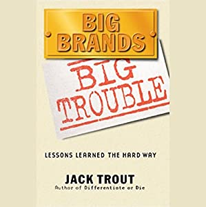 Big Brands Big Trouble Audiobook