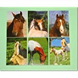Horse Notebooks x 6 Party Bag Fillers