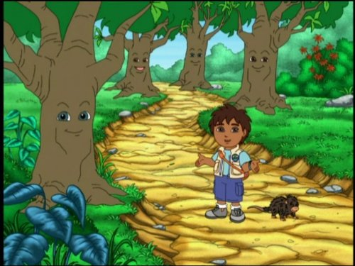 Diego and Porcupine Save the Pinata! (Go Videos Go Diego)