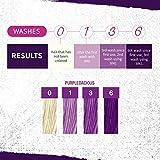 Punky Purpledacious 3-in-1 Color Depositing Shampoo