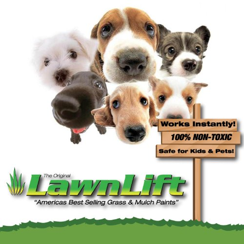 Lawnlift Ultra Concentrated (Green) Grass Paint 5 Gallon Case = 55 Gallons of Product. by LawnLift (Image #4)