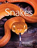 Snakes, Peter Stafford and David Gower, 1554078024