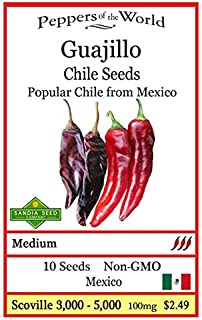 Guajillo Pepper 10 Seeds - Rare and Non-gmo - Easy to Grow