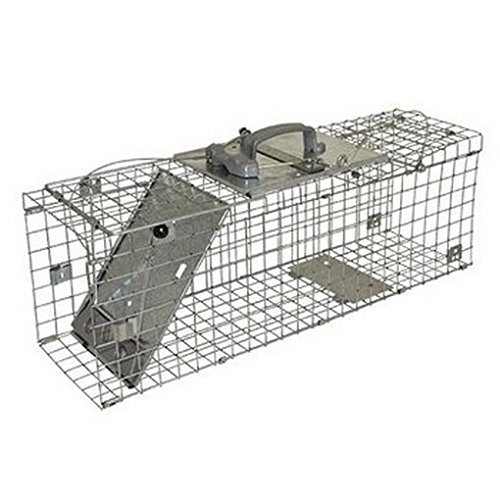 kc65 pequeño plegable de fácil de jaula trampa: Amazon.es: Jardín