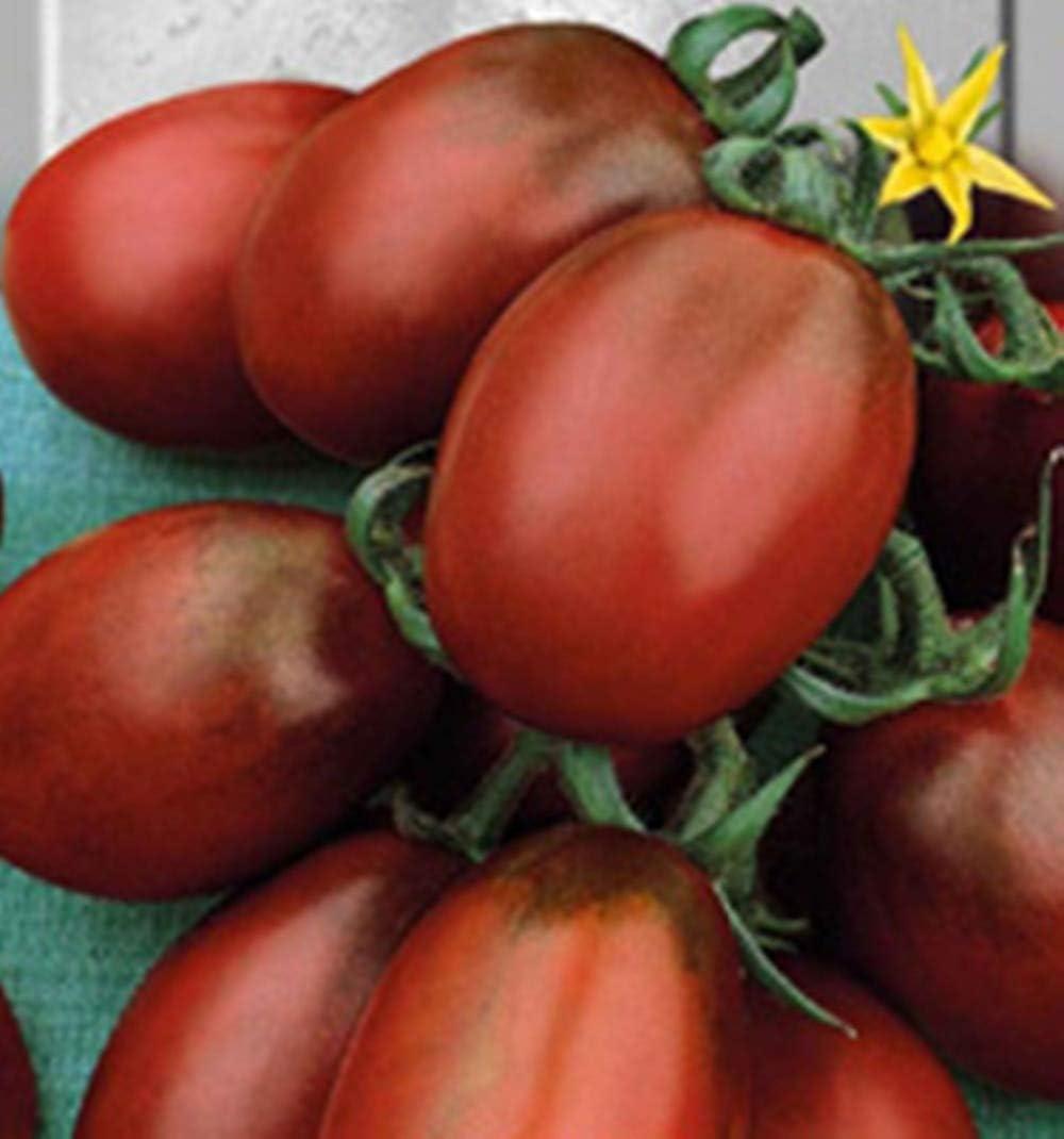 Rare Tomate De Barao Chornyy-De Barao Noir Heirloom Vegetable 100pcs GEOPONICS GRAINES