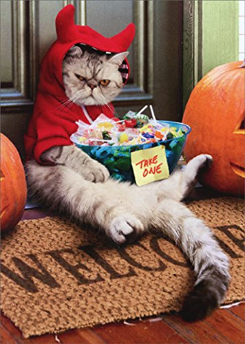 (Cranky Devil Cat Avanti Funny Halloween)
