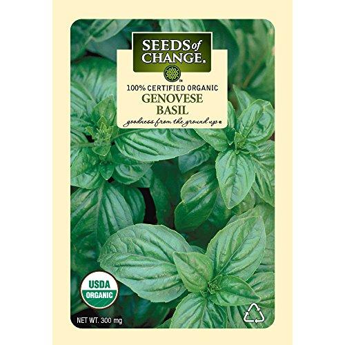 Seeds of Change Certified Organic Basil, Genovese - 300 milligrams, 125 Seeds Pack