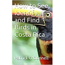 How to See, Identify, and Find Birds in Costa Rica