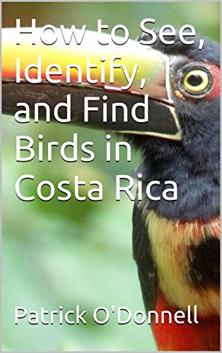 How to See, Identify, and Find Birds in Costa Rica (Bird Presents Feeder)