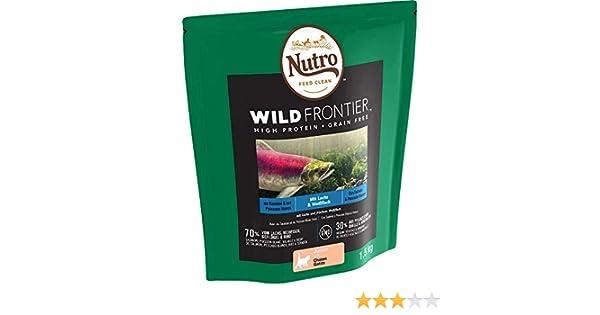 NUTRO Pienso Gatito Salmón y Pescado Blanco 1,5 kg Wild Frontier: Amazon.es: Productos para mascotas