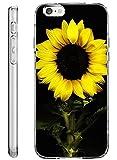 iPhone 6S Case Bumper (4.7 Inch) Apple iPhone 6 6S (2014/2015) Sunflower in Black