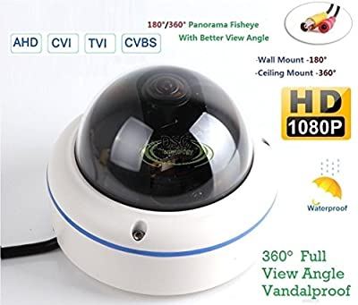 "180/360? Panorama View Angle 700TVL 1/3 1/3"" Sony Super HAD II CCD Double Scan Indoor/Outdoor Dome Security Camera, Advanced DSP to Offer High Image Quality from Diysecuritycameraworld"