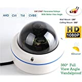180/360˚ Panorama View Angle 700TVL 1/3 1/3 Sony Super HAD II CCD Double Scan Indoor/Outdoor Dome Security Camera, Advanced DSP to Offer High Image Quality