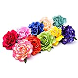 Ever Fairy Rose Flower Hair Clip Slide Flamenco Dancer Pin up Flower Brooch(10 pack)(10 Color Pack C)