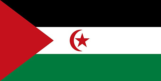 DIPLOMAT-FLAGS República Árabe Saharaui Democrática Bandera | Bandera Paisaje | 0.06m² | 20x30cm Banderas de Coche: Amazon.es: Jardín