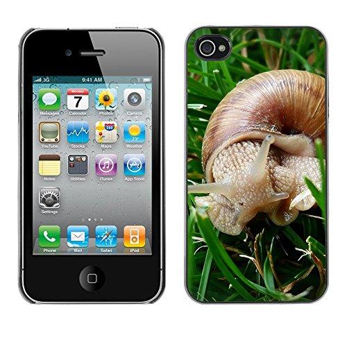 Bild Hart Handy Schwarz Schutz Case Cover Schale Etui // M00135549 Snail Csigabiga Tier // Apple iPhone 4 4S 4G