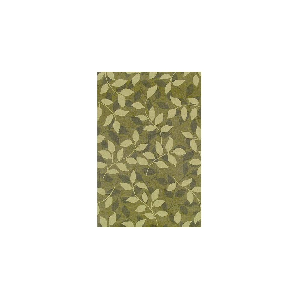 Duracord Sawgrass Mills Divine Green Indoor/Outdoor Rug   HRDVP   5 x 8 Rectanggle