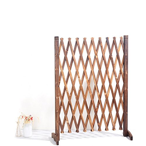 CSQ Solid Wood Partition Shelf, Chinese Fir Plant Stand Restaurant Bedroom Living Room Balcony Feature Decoration Indoor Outdoor Flower Shelf by Flowers and friends