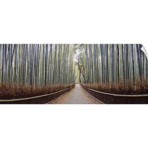 CANVAS ON DEMAND Bamboo Trees in a Forest, Arashiyama, Kyoto Prefecture, Japan Wall Peel Art Print, 90