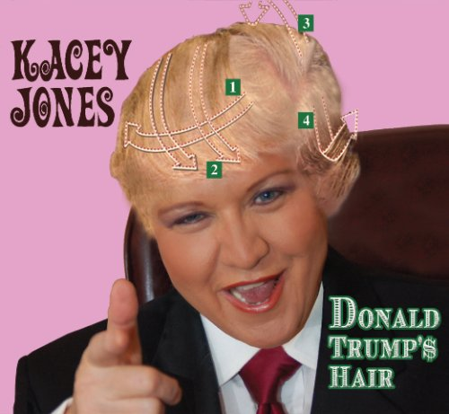 Donald Trump's Hair Audio CD