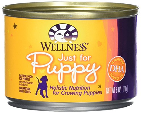 Wellness Just for Puppy Can Food - 6 oz - 24/cs