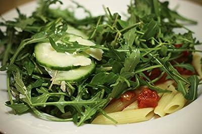 1,500+ Arugula Seeds- Wild Italian (Sylvetta)- Lettuce (Herb)