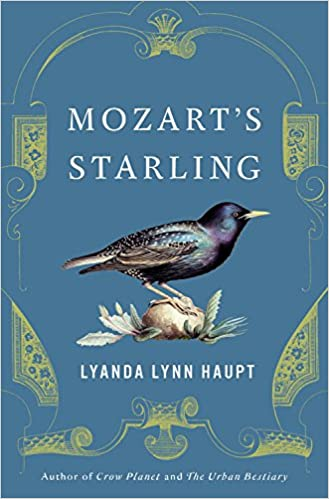 Image result for mozart's starling