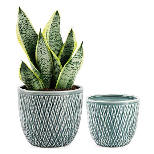 Greenaholics Plaid Ceramic Planters – 4.7 + 5.9 Inch Plant Pots with Drain Hole, Flower Plant Pots for Indoor Decor, Set…