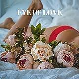 SEDUCE by Eye Of Love - The pheromone perfume for
