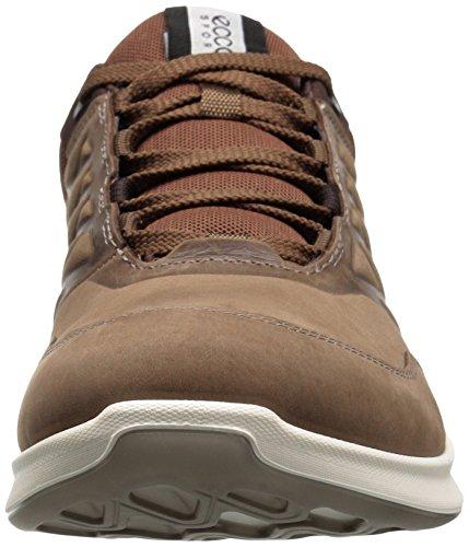 Ecco Hombres Exceed Low Fashion Sneaker Birch