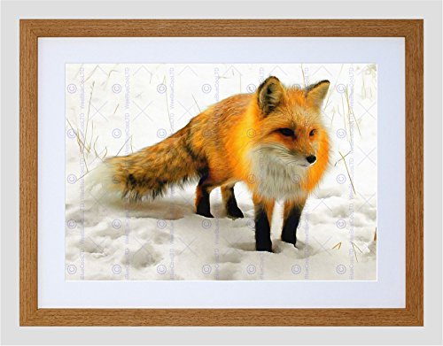 The Art Stop Photo Painting RED Fox Winter Snow Cute Framed Print F97x11703