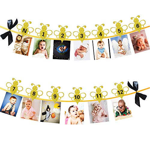 - SAKOLLA 1st Birthday Photo Banner, 1-12 Month Bumble Bee Photo Banner with Pretty Bows for Newborn First Birthday Party Decoration