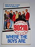 Beverly Hills 90210: Where the Boys Are