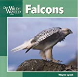 Falcons, Wayne Lynch, 1559719125