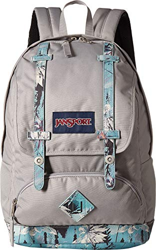 JanSport Cortlandt Backpack- Sale Colors (Springing Garden)