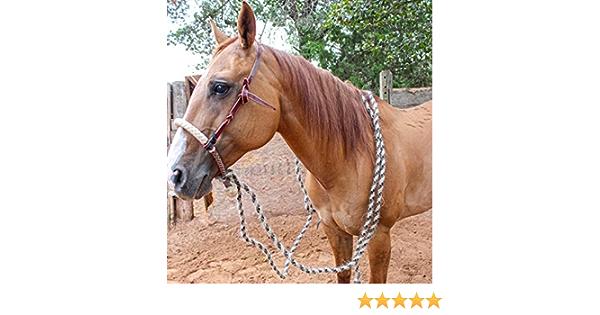 M-Royal Saddles Breaking Rawhide Hackamore Set Horse Hair Reins